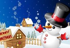 Красивый снеговик в черной шляпе
