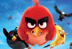 Angry Birds в кино HD обои скачать