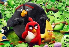 Отчаянные Ред, Чак и Бомб против зеленых свинок обои HD