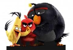 Злые птички три друга Ред, Чак и Бомб на белом фоне обои…