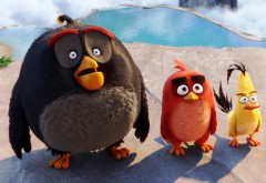 Angry Birds в кино обои на рабочий стол