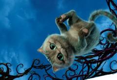 Cheshire, Алиса в зазеркалье, Чеширский Кот обои