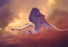 летающий, Пегас, дракон, лошадь, пегас, небо, крылья, пол…