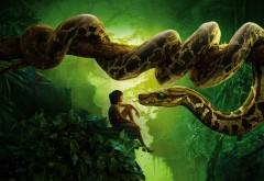 Книга джунглей, змея, Каа, Маугли, ребенок, питон обои
