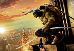 Черепашки-ниндзя, leonardo, мультфильм, ниндзя-черепашка, леонардо, Лео, синий, ниндзято, город обои