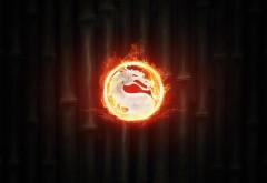 логотип, мартал комбат, огненный дракон, фон, бамбуковый фон, фэнтези