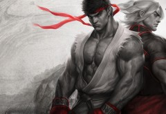 Streetfighter, Brotherhood, бои, братство, стритфайтер, игры, игра, о…