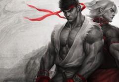 Streetfighter, Brotherhood, бои, братство, стритфайтер, игры, игра, обои