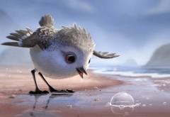Песочник, Piper, пиксар, pixar, птичка, клюв, мультфильм обои