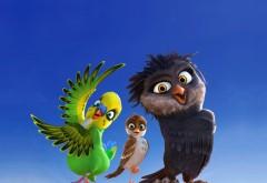 Трио в перьях, сова, Ольга, Кики, попугай, воробей, Ричи, …
