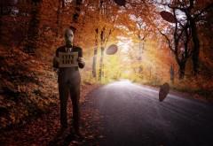 противогаз, листва, осень, дорога, лес, человек, жизнь