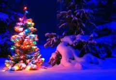 Праздник в лесу украшенная елка для Нового года и Рождества обои