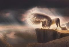 пегасус фэнтези, Pegasus Fantasy, 4k, 3840x2160 обои