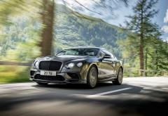 2018 Bentley Continental GT Supersports мчится на фоне леса обои