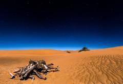 Пустыня Сахара фото 3840x2160, 4k обои скачать