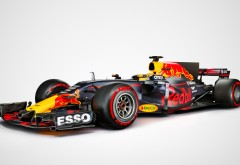 Ред Булл команда Формулы-1 обои HD