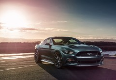 Ford Mustang GT Velgen Wheels на вечернем закате