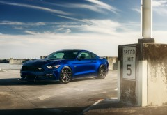 Ford Mustang V8 ADV 1 Wheels
