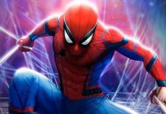 Скачать обои Человек-паук