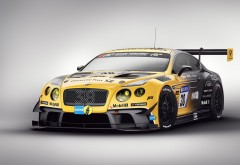 2017 Bentley Continental 24 GT3 Special Edition гоночный кар картинки