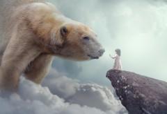 Сказка полярный медведь и маленькая девочка картинки