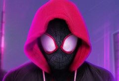miles_morales_spider_man_into_the_spider_verse-1920x1080