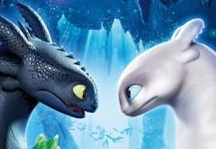 Белый и черный дракон из мультфильма картинки