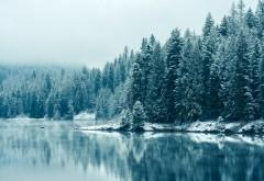 Кутеней река, снегопад, зима, лес, горы, пейзаж, фото