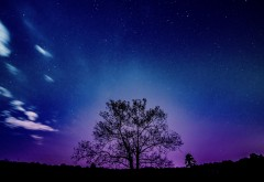 Фиолетовый закат пейзаж обои HD