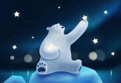 Милый белый медведь играет со звездами картинки