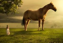 Девушка, лошадь, ландшафт, природа, фото