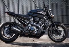2020 Harley-Davidson Streetfighter картинки