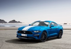 2019 Ford Mustang EcoBoost Performance Pack обои