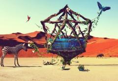 Пустынный рай скачать обои