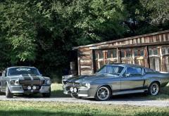 Два красивых авто Mustang Gt5oo серебристого цвета
