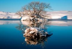 Снимок заснеженных берегов озера