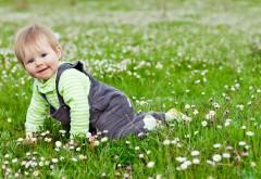 Маленький мальчик на поляне
