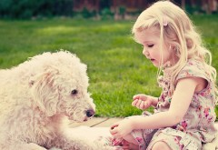 Обои девочки и собаки