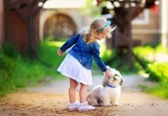 Обои девочки с маленькой собачкой на улице