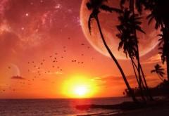 Обои заката на солнечном острове