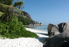 Обои необитаемого острова, солнце, море, пляж, песок