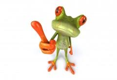 Обои жабы на белом фоне