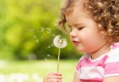 Маленькая девочка с кучерявыми волосами с одуванчиком