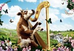 Корова играет на арфе, креативные обои бесплатно скача…