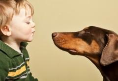 Ребенок и собака картинки скачать бесплатно