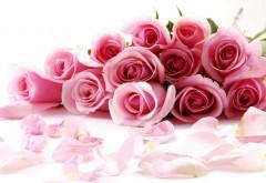 Букет алых роз к празднику обои бесплатно