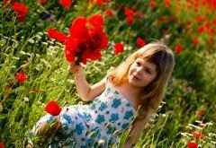 Ребенок девочка собирает красные цветы в поле