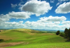 Обои обычного неба на зеленых лугах