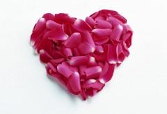 Сердце из лепестков цветов