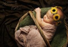 Спящий ребенок с венком из подсолнухов на голове